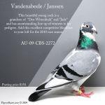 small_au09cbs2272_janssen_cock_posting.jpg