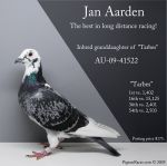 small_au_09_41522_janaarden__hen_posting.jpg