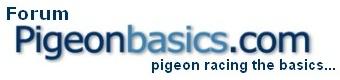 Pigeonbasics Forum