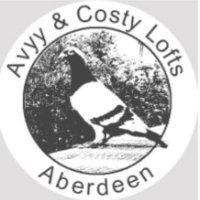 Avyy&Costy
